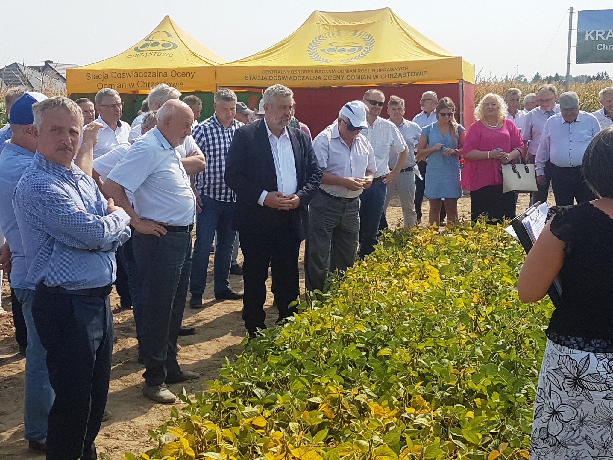 Min. J.K. Ardanowski ogląda z rolnikami uprawy soi