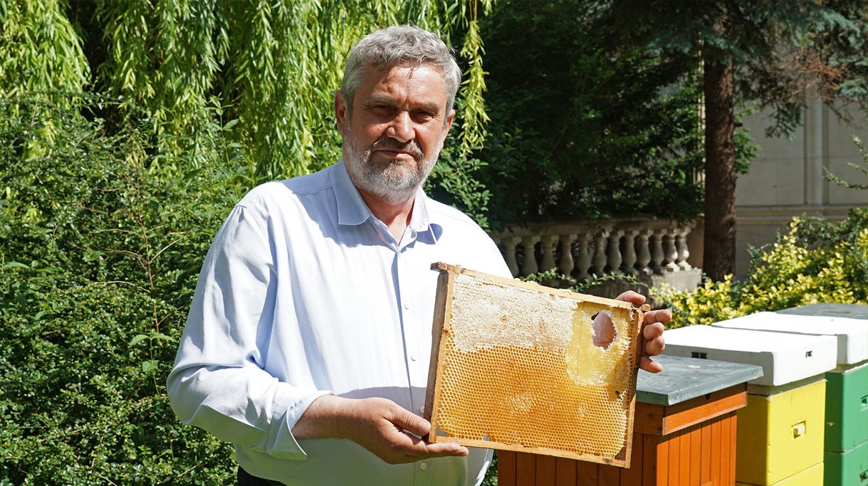 Minister J. K. Ardanowski z plastrem miodu pochodzącym z uli stojących na dziedzińcu ministerstwa