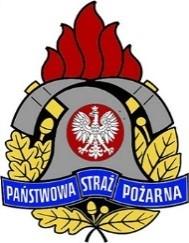 Logo PSP
