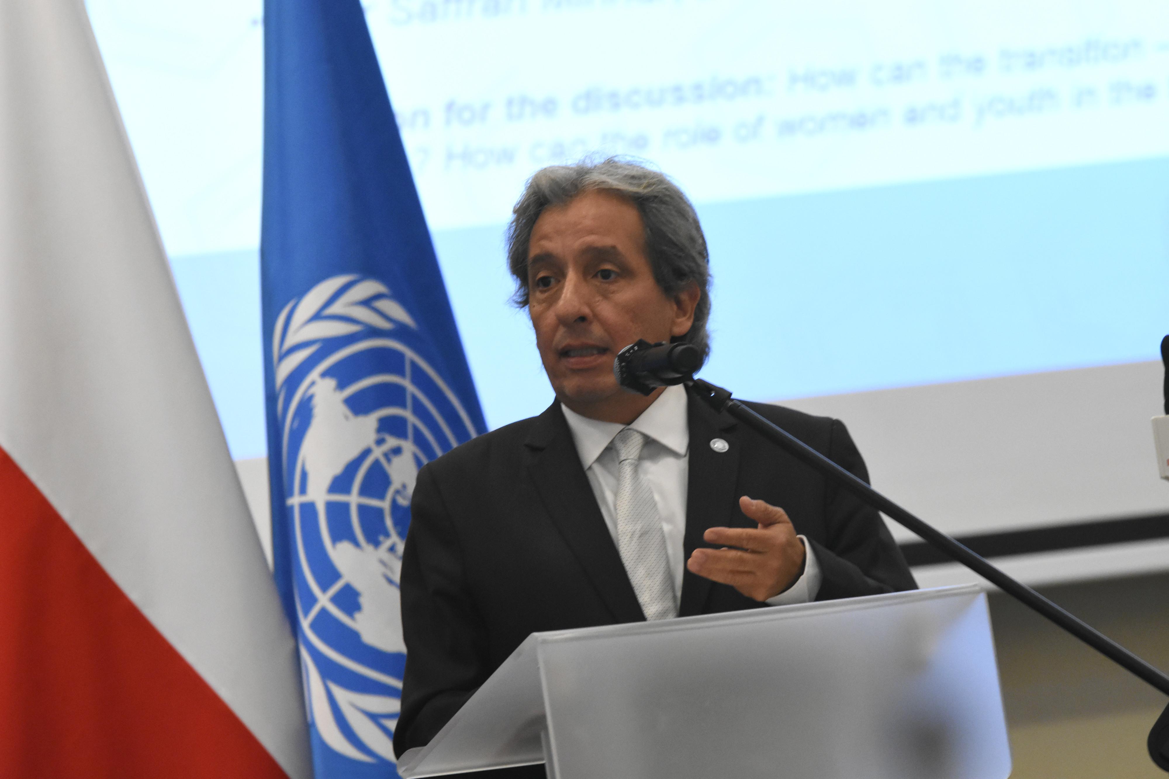 Manuel Pulgar-Vidal, Prezydent COP20
