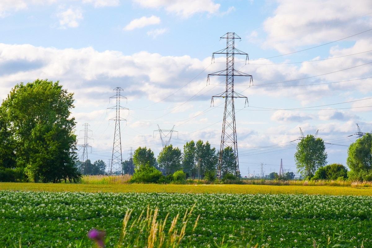 Sieci elektroenergetyczne, łąka, błękitne niebo