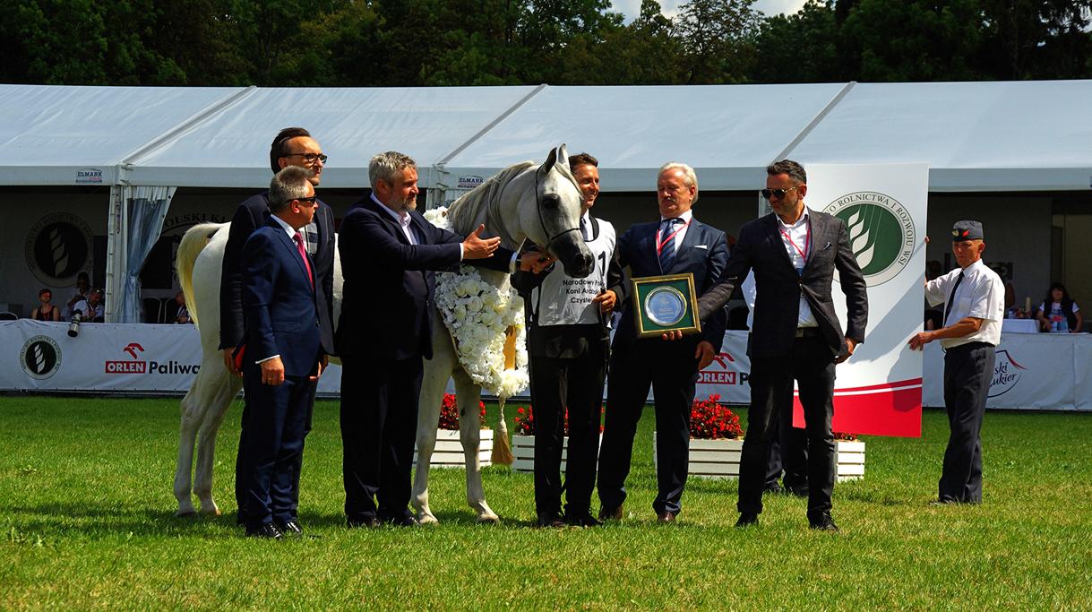 Minister Ardanowski biorący udział w dekoracji czempionów ze stadniny w Janowie