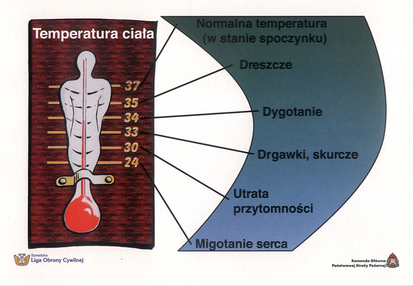 Rys. 3. Temperatura ciała.