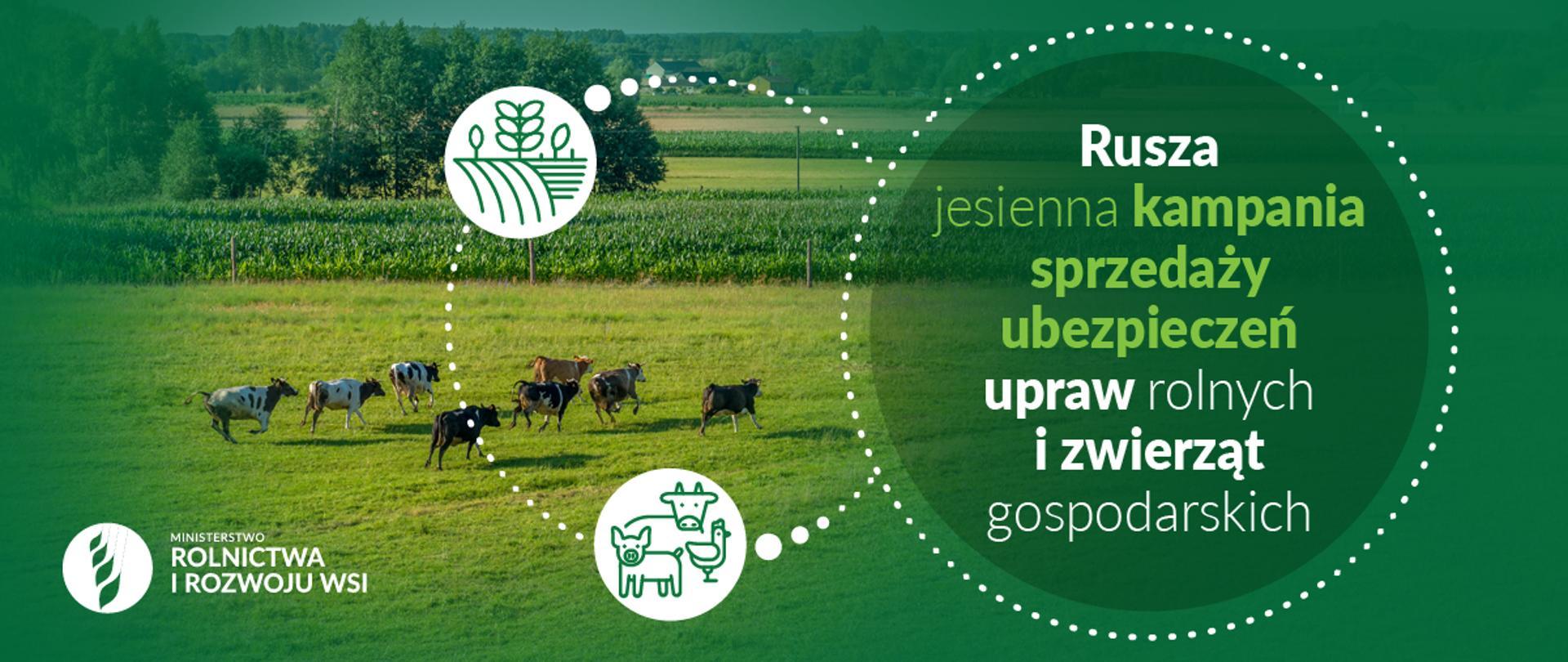 Zdjęcie do artykułu Rusza jesienna kampania sprzedaży ubezpieczeń rolnych
