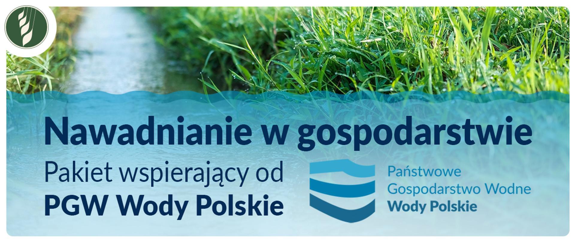 Nawadnianie w gospodarstwie – PGW Wody Polskie przygotowało pakiet wspierający