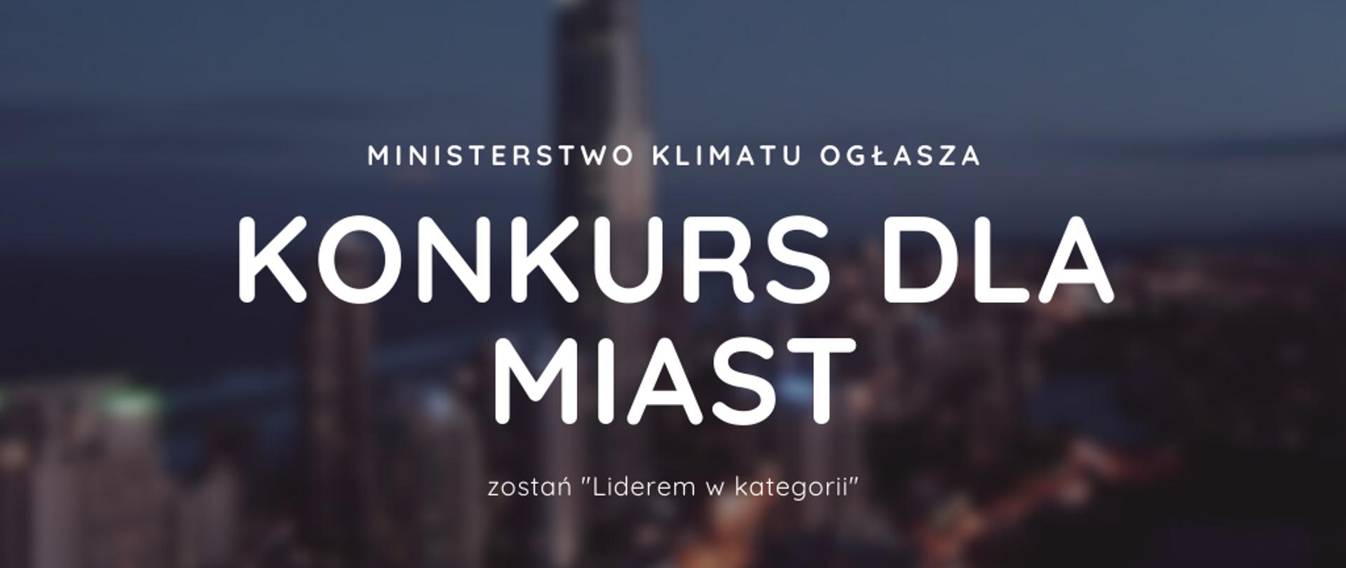 """Konkurs dla miast – """"Lider w kategorii"""""""