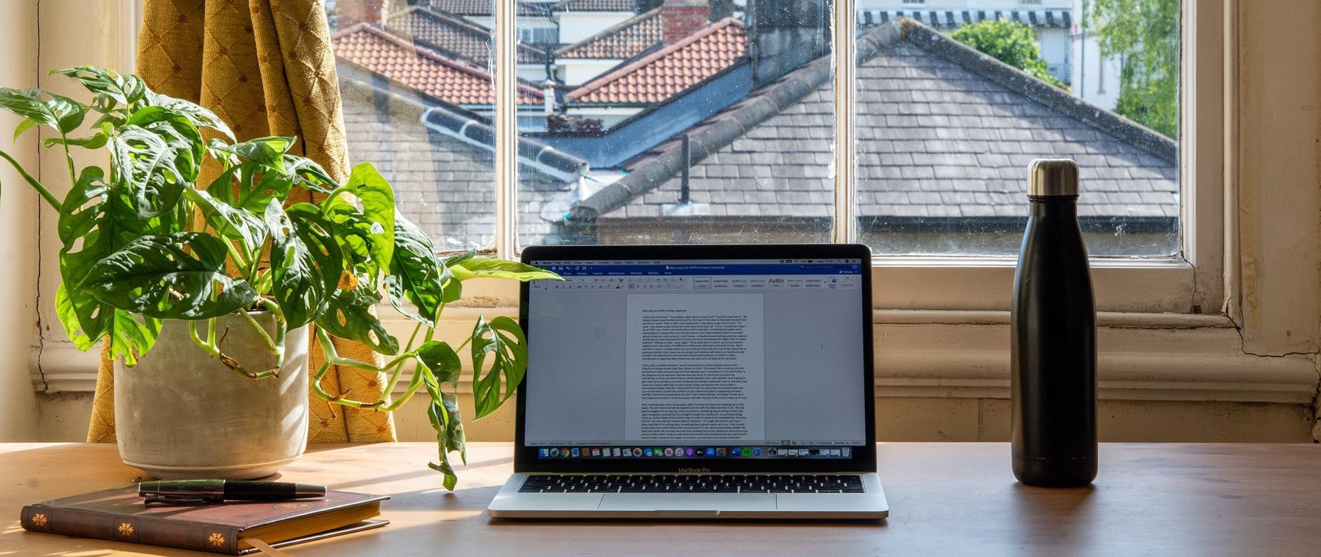 Zdjęcie - laptop stojący na stole, obok roślina w doniczce, za nim okno z widokiem na spadziste dachy zabudowań.