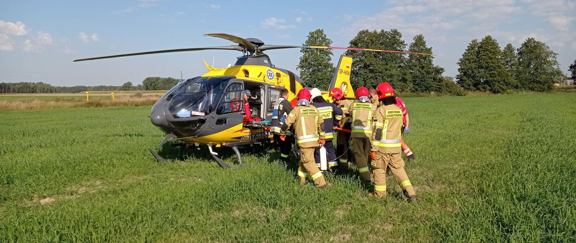 Zdjęcie przedstawia strażaków i ratowników medycznych działających przy wypadku. W tle śmigłowiec ratowniczy, pole i drzewa.