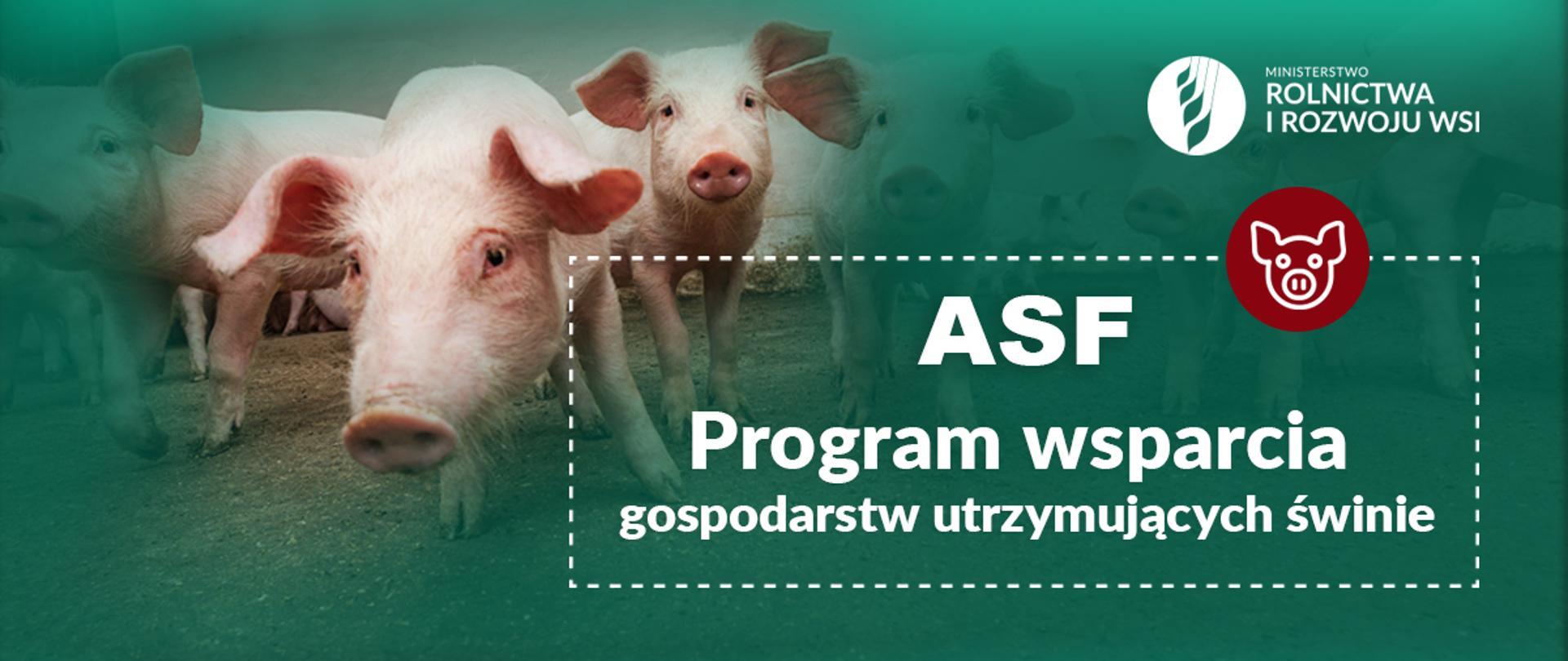Program wsparcia gospodarstw utrzymujących świnie