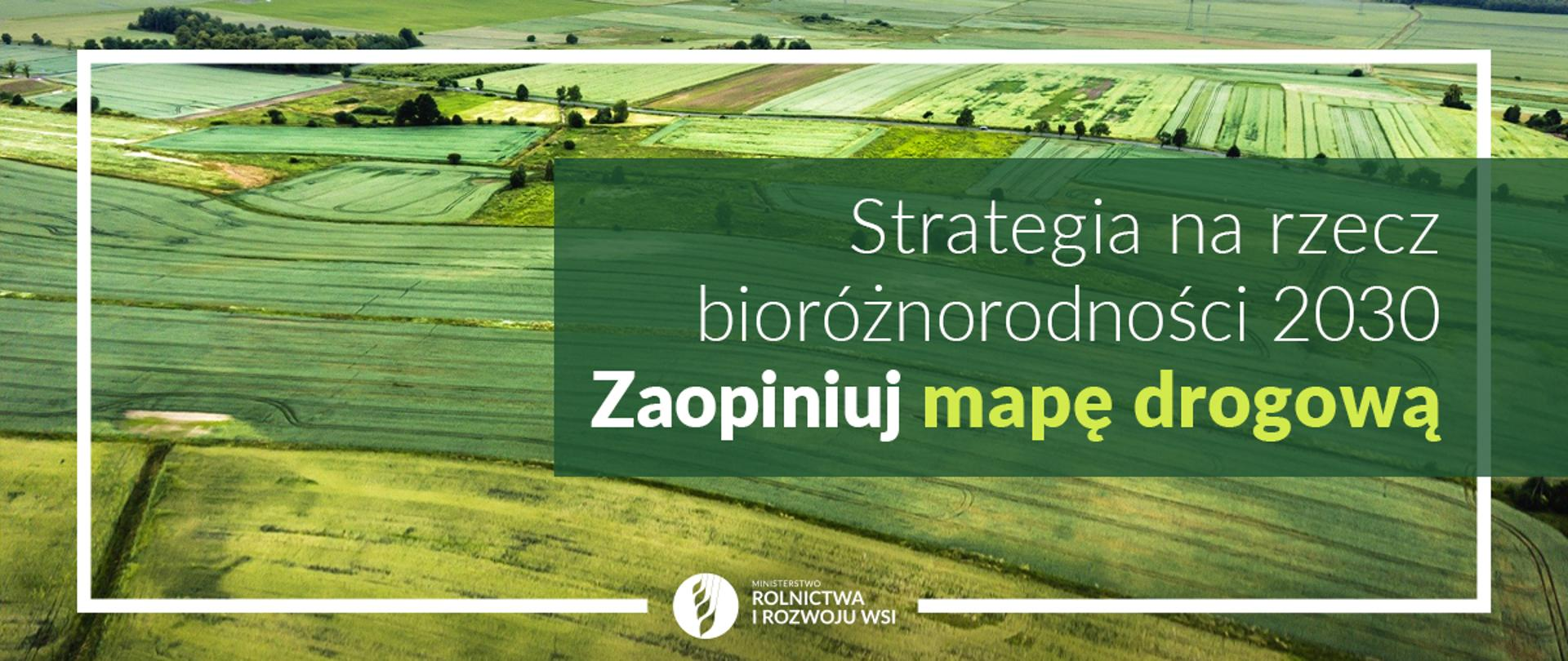 Strategia bio2030 - mapa drogowa