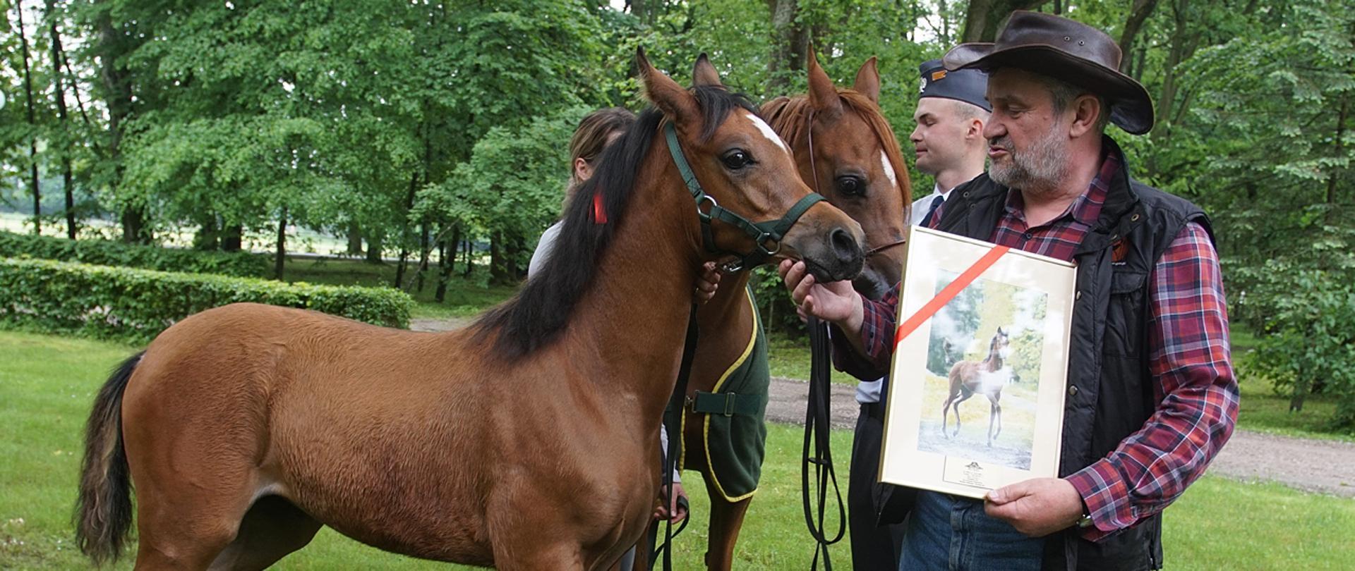 Komu zależy na obniżeniu wartości polskich koni arabskich