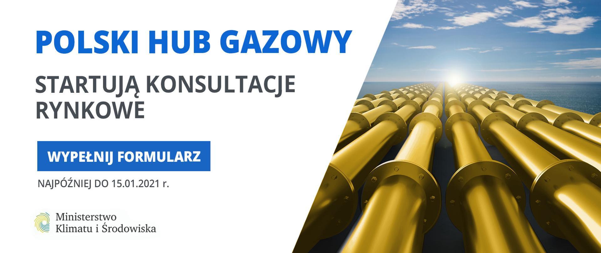 Polska regionalnym hubem gazowym? Ruszają konsultacje rynkowe