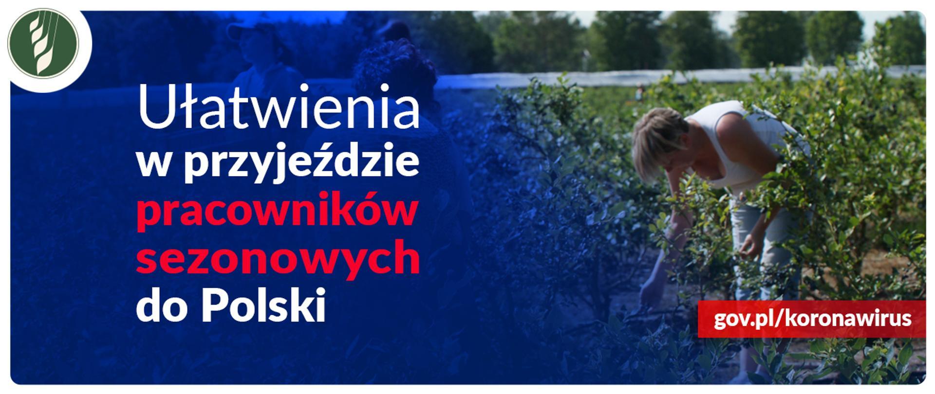 Ułatwienia w przyjeździe pracowników sezonowych do Polski