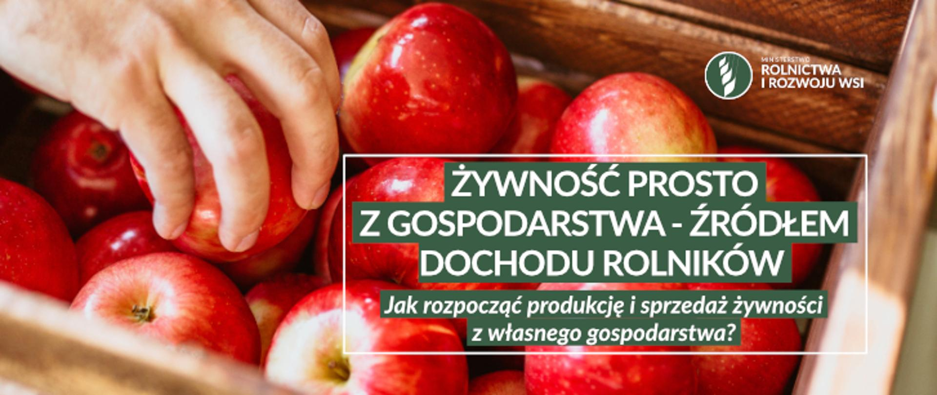 dłoń i jabłka w koszu