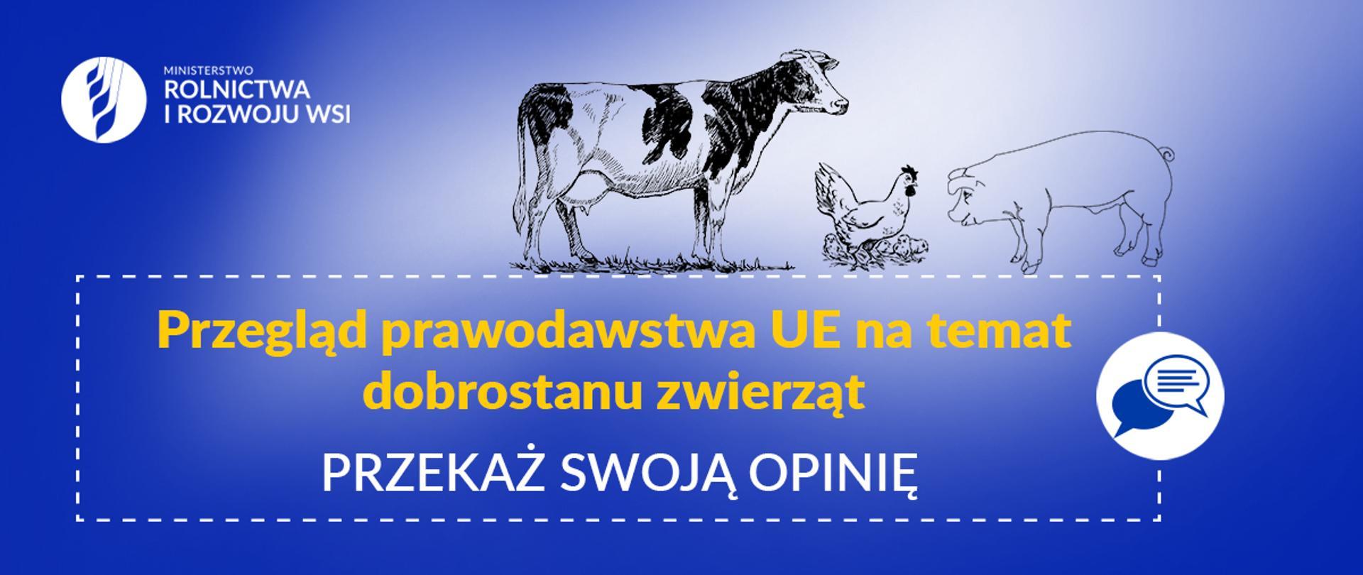 Przegląd prawodawstwa UE nt. dobrostanu zwierząt – przekaż swoją opinię