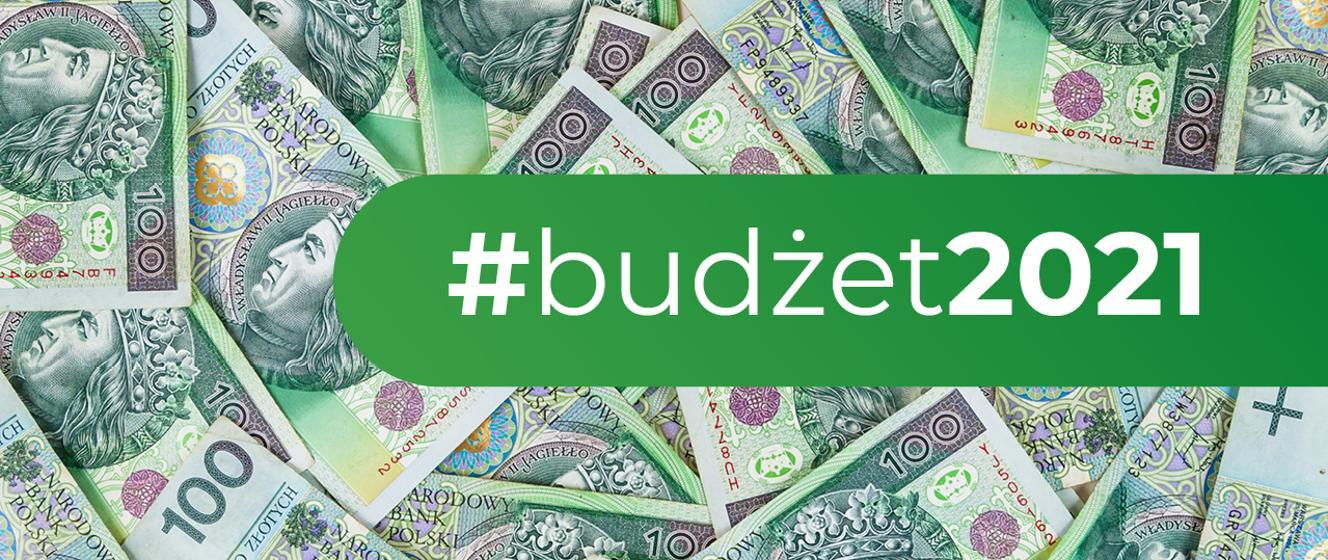 Budżet na 2021 r. motorem wzrostu gospodarczego - Ministerstwo Finansów - Portal Gov.pl