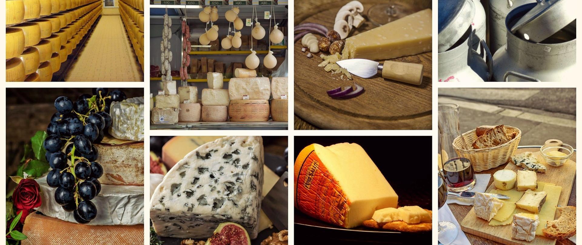 Kolaż zdjęć produktów mlecznych: sery pleśniowe, sery dojrzewające, sery żółte oraz krowy i cielaki.