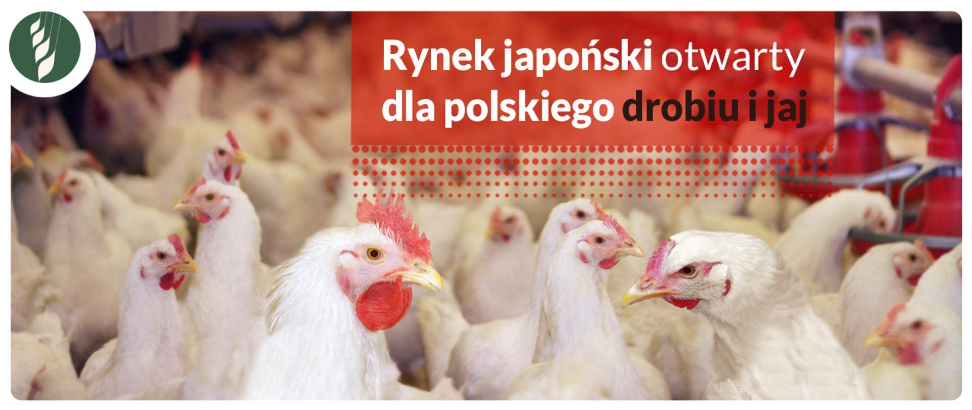Rynek japoński otwarty dla polskiego drobiu i jaj