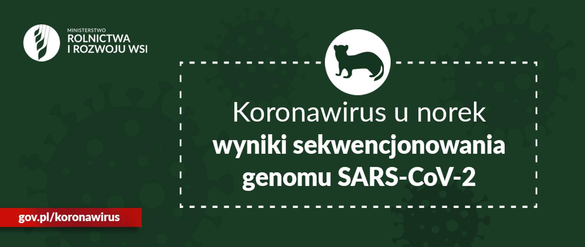 Koronawirus unorek 13 lutego