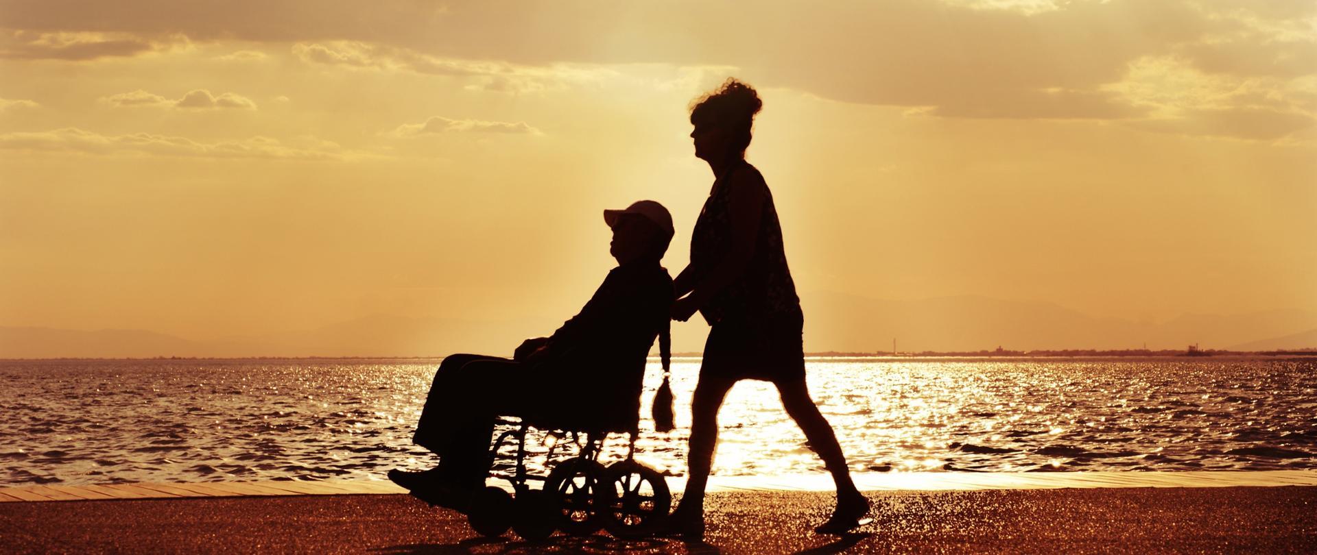 Wsparcie dla niepelnosprawnych
