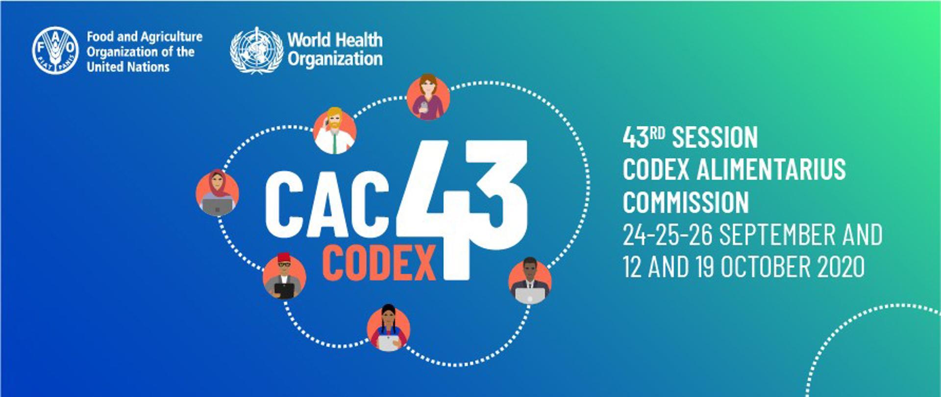 43. Sesja Komisji Kodeksu Żywnościowego FAO/WHO