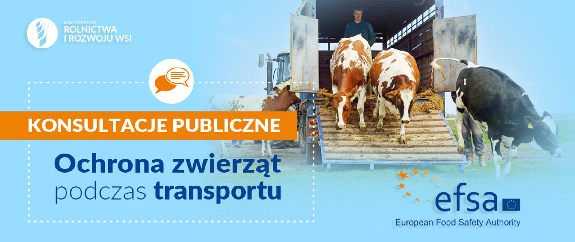 Ochrona zwierząt podczas transportu