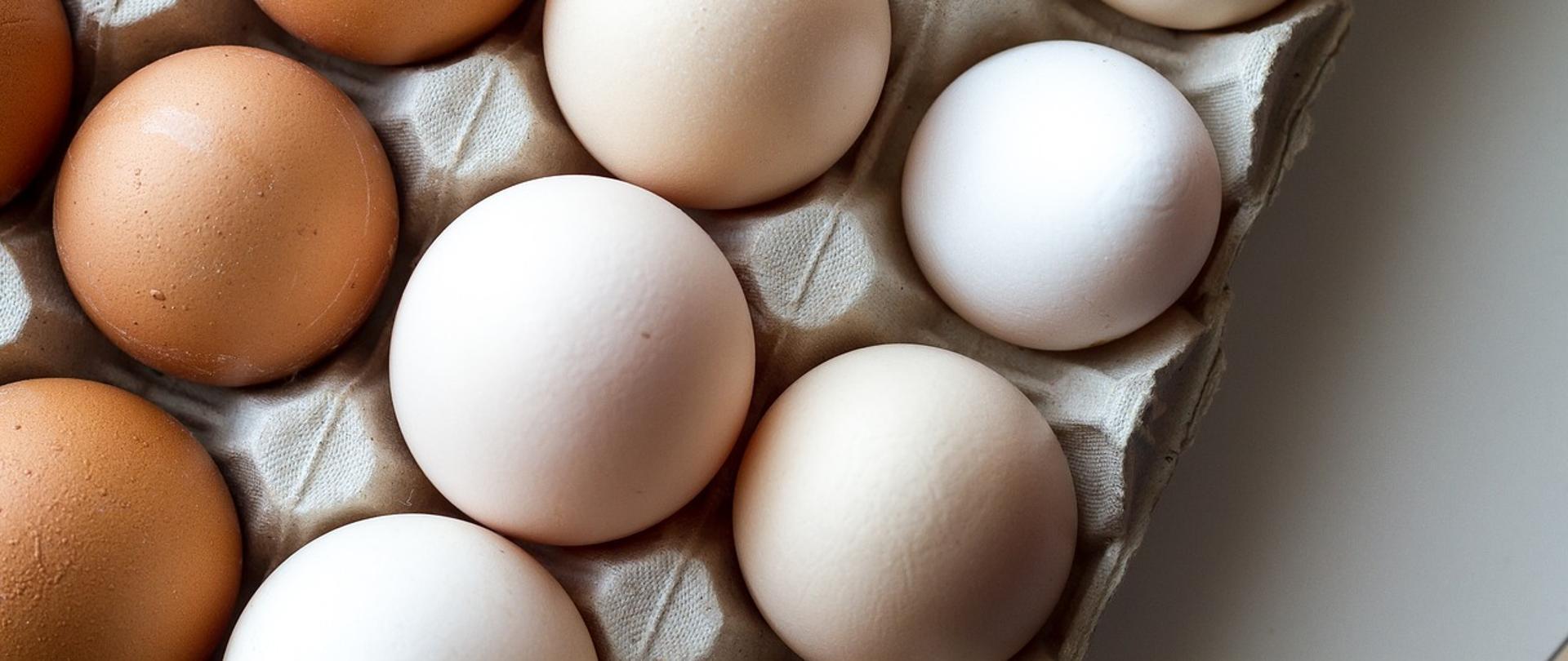 Jakość handlowa jaj